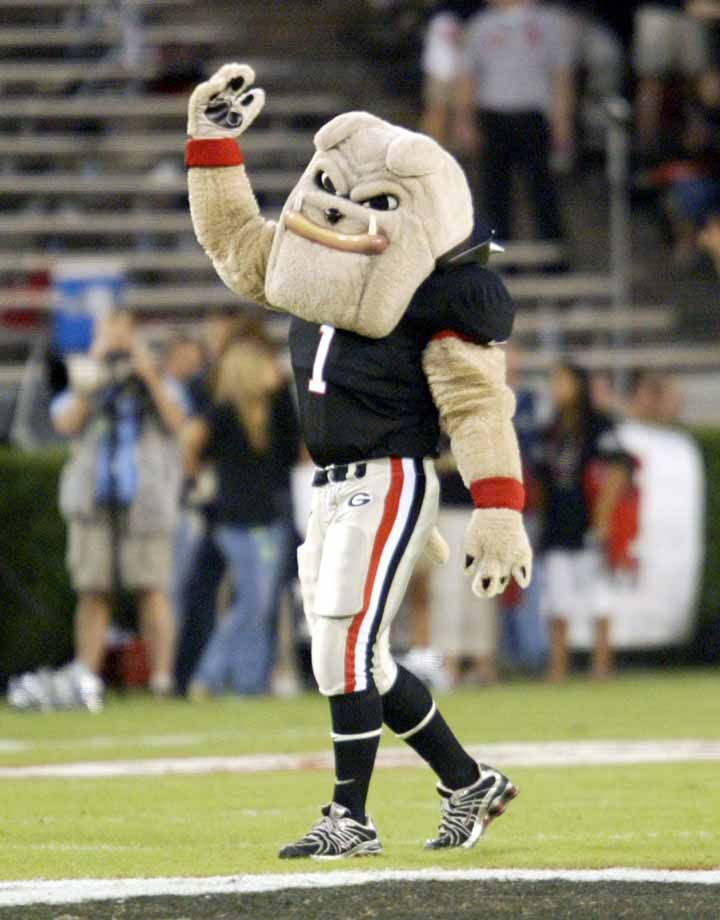 """Georgia Bulldogs mascot Hairy Dawg pumps up the crowd at a UGA """"Blackout"""" game."""