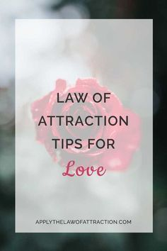 Law of Attraction Tips for Love