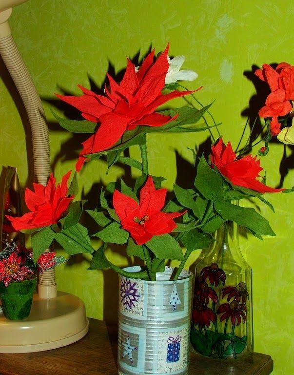 Zdjęcie: Poinsecja (gwiazda betlejemska) z bibuły - krzaczek