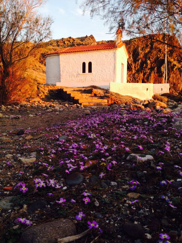 Early spring at Lesvos island - Eressos Photo taken by Vicky Pngr