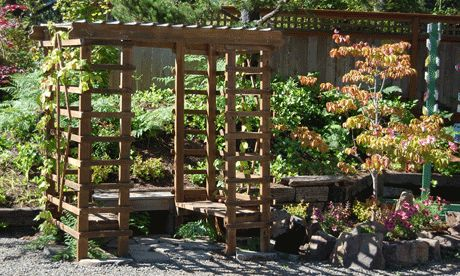 Wood Arbor With Trellis On Side And Top To Train Grapes