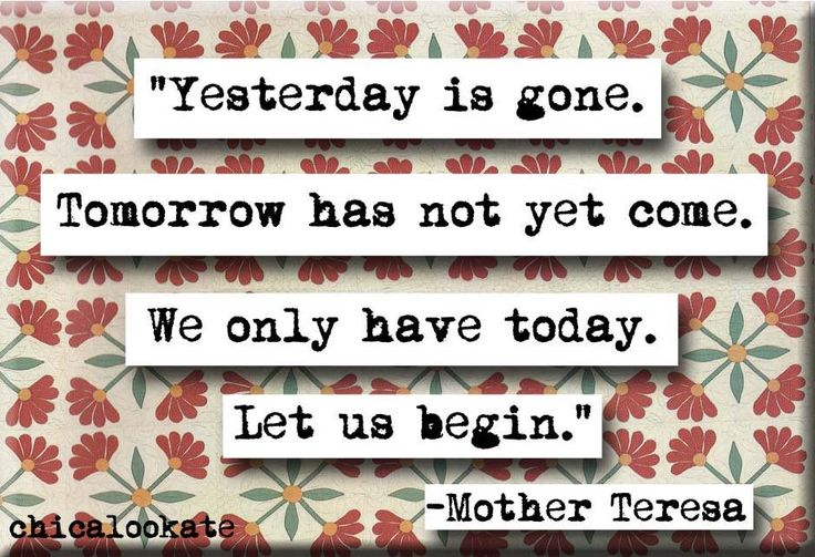 'Yesterday is gone. Tomorrow has not yet come. We have only today. Let us begin.' I have a collection of quotes that I have been waiting to put to use some how and I have finally found one. This magne