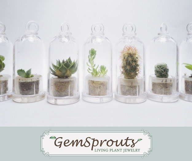Wearable Plant Secret Suprise Dome GemSprout by GemSprouts