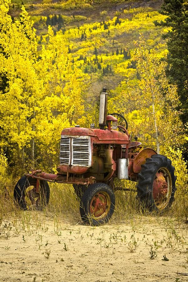 Old Farm Tractor Photograph  - Old Farm Tractor Fine Art Print