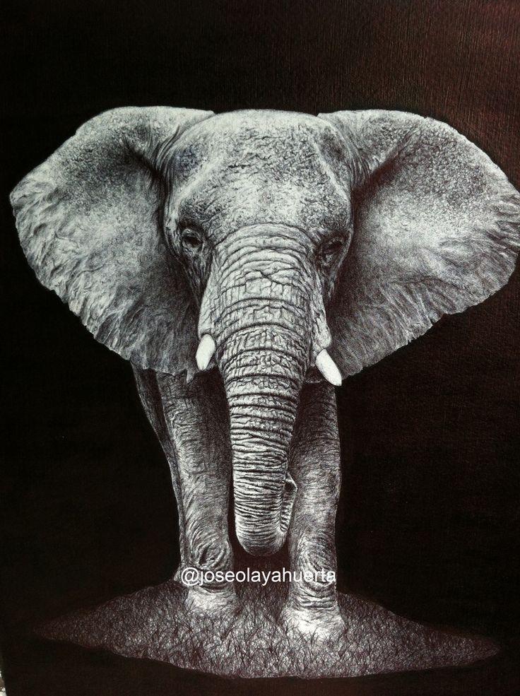 My own elephant!