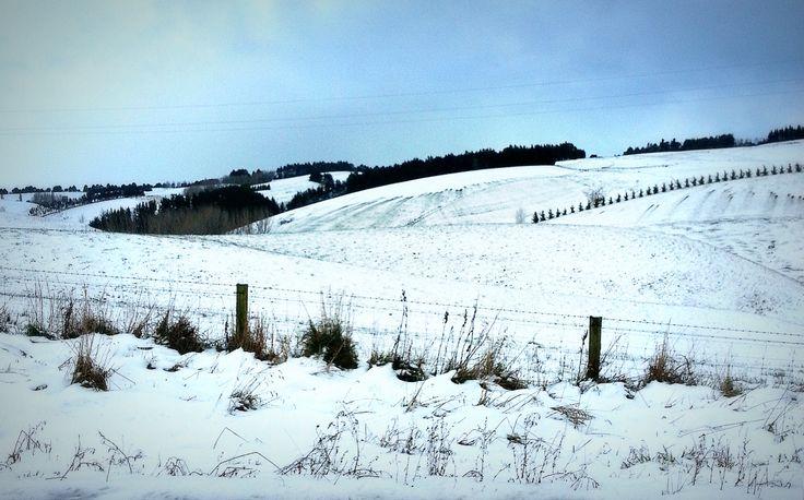 Dunedin Hill after a snow fall