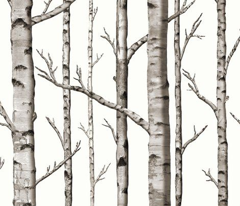 HERE IT IS - just what I've been looking for!! Birch tree fabric OR WALLPAPER on spoonflower
