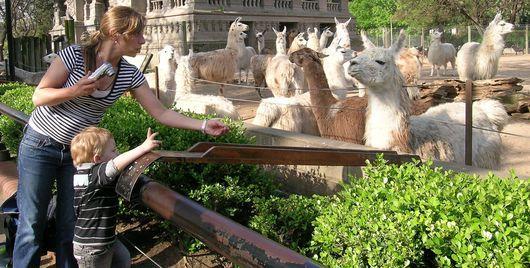 En esta foto se muestra una foto de una madre con su niño en el zoológico de Buenos Aires que es uno de los atractivos turísticos ubicados en Argentina. Un hecho interesante acerca de este lugar es que tienen una gran variedad de animales, incluyendo los animales de granja de reptiles.
