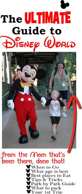 DISNEY WORLD - Everything you need to know to plan your next family vacation at Disney World. TONS of free Disney World tips and tricks, Disney World planning, touring plans, best character dining, best Disney World hotels, Magic Kingdom, Animal Kingdom, Epcot, Hollywood Studios, and so much more!