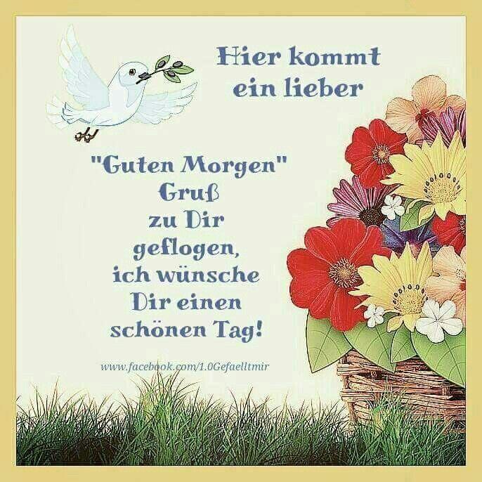 Pin By Heike Schunemann On Bijue Greetings Book Cover