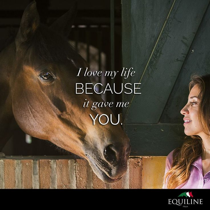 I love my life because it gave me you. #Equiline #quotes