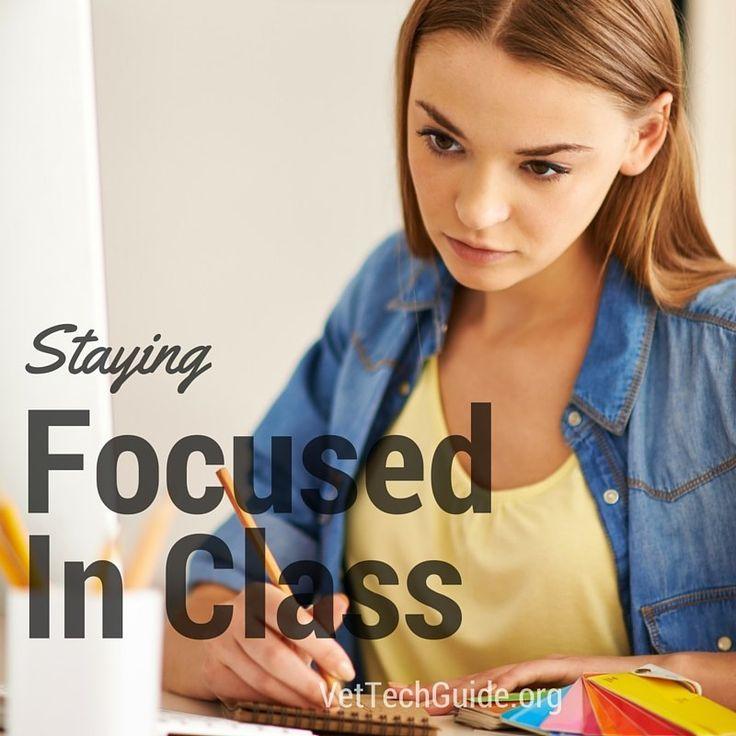 14 Best Vet Tech Training And Schools Images On Pinterest