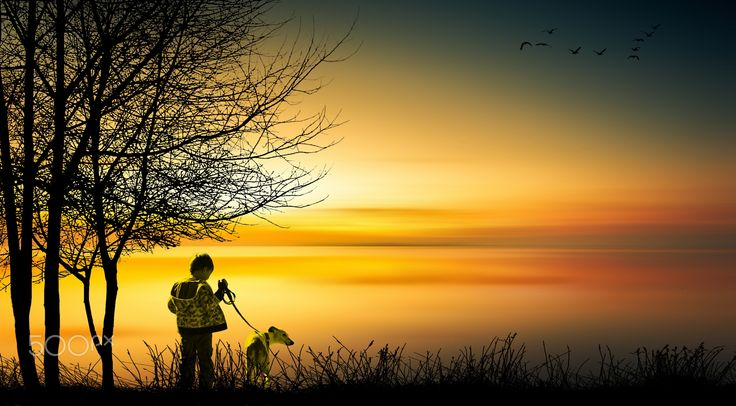 boy and dog 1 - null