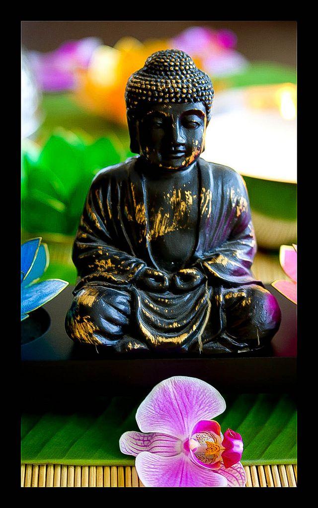 Buddha ... Buda ... Siddhartha Gautama