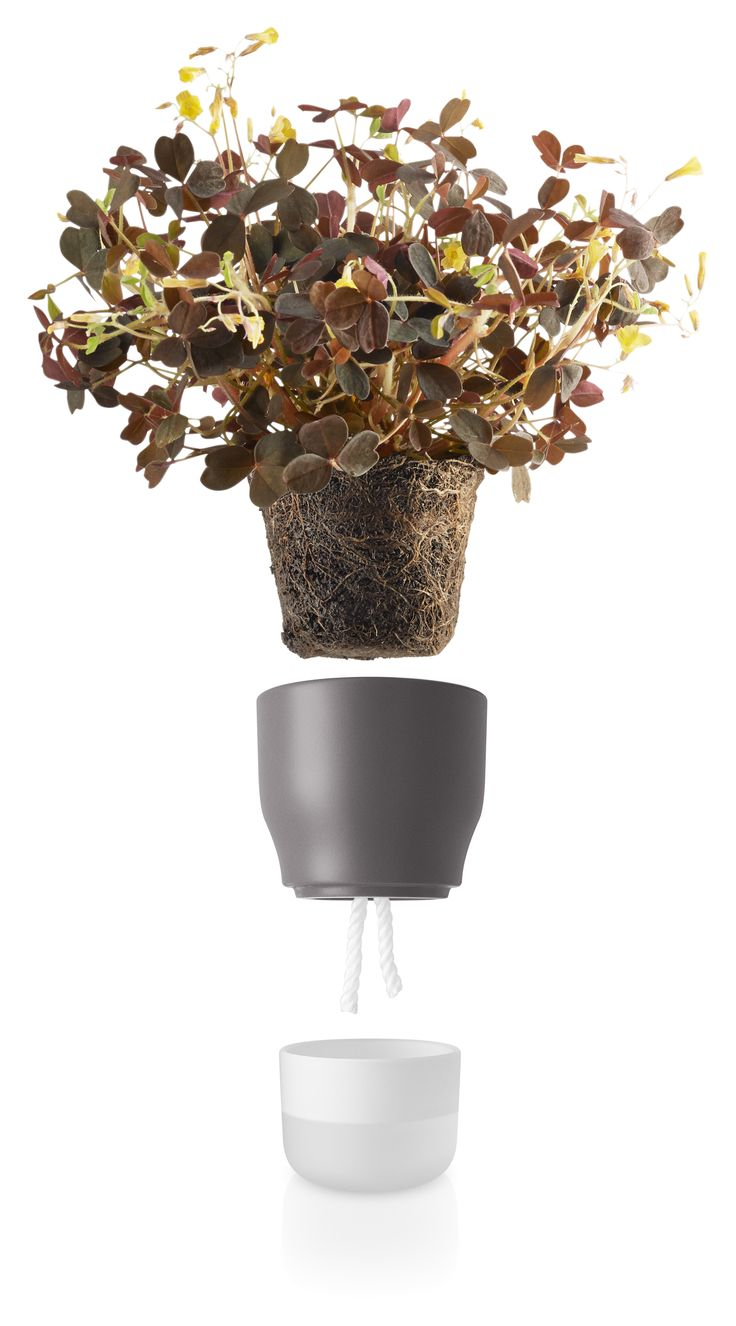 Nordic grey selfwatering pot 9 cm by Eva Solo