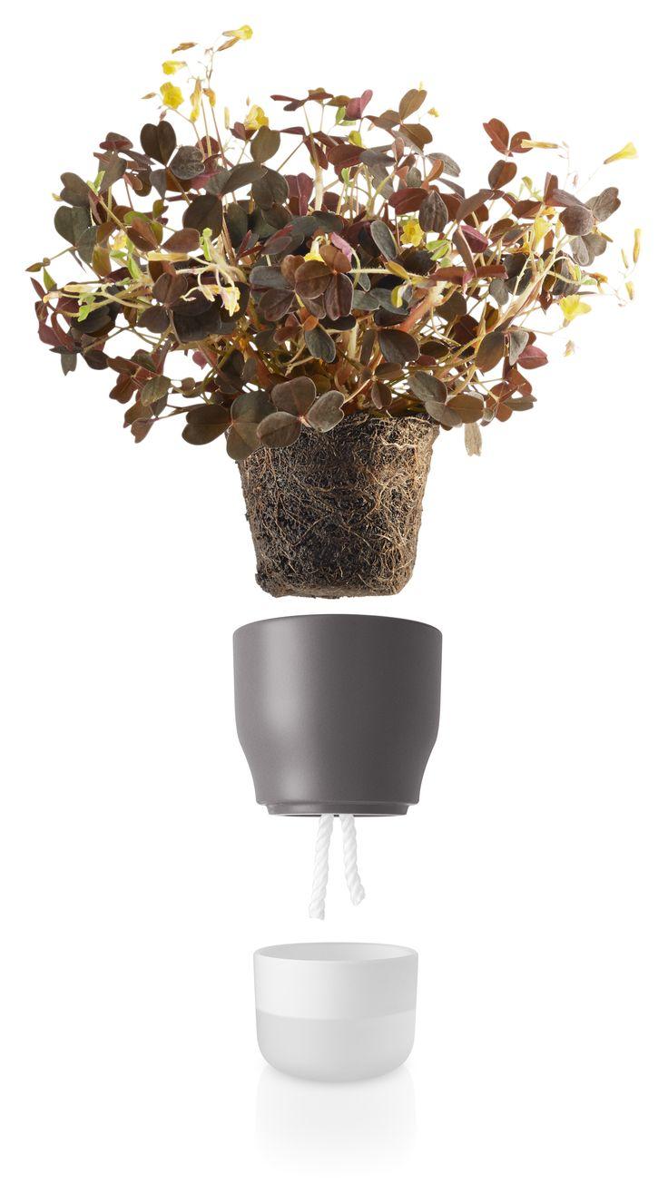 Nordic grey selfwatering pot 9 cm by Eva Solo