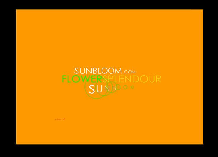 | FLASH | ☆ Intro Sunbloom ☆