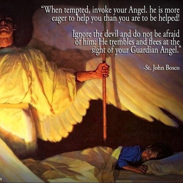 St John Bosco Quotes Education: Angel St John Bosco Quotes. QuotesGram