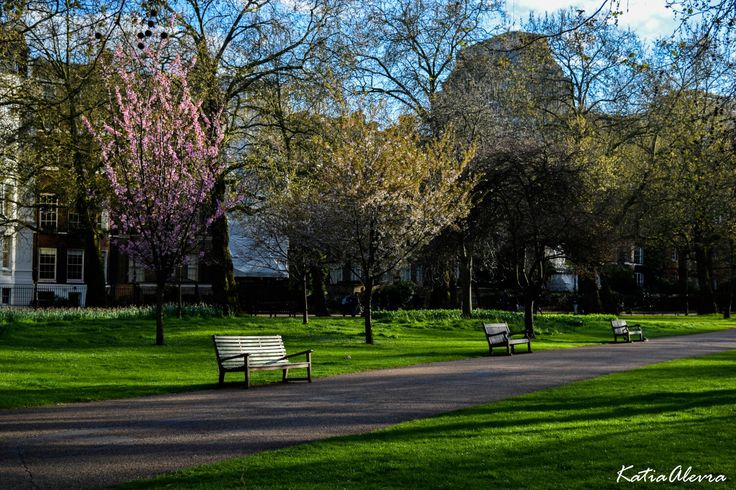 St James Park!