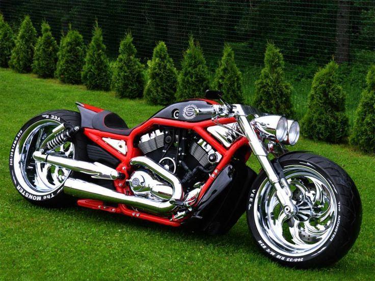 Supercharged custom Freddy Harley Davidson