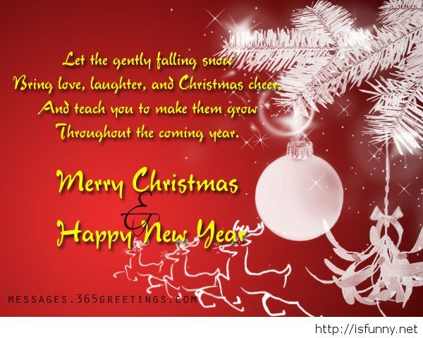 1000 Merry Christmas Wishes Quotes On Pinterest: 1000+ Ideas About Funny Christmas Card Sayings On