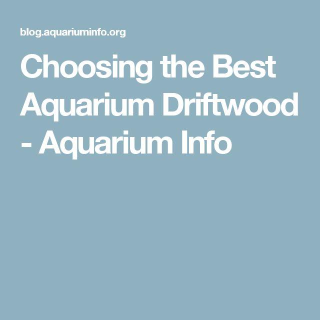 Choosing the Best Aquarium Driftwood - Aquarium Info