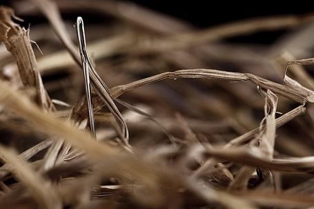 Evernote: Encontrar una aguja en un pajar en segundos | Recull diari | Scoop.it
