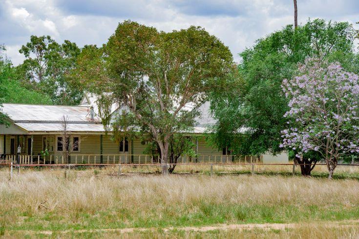 ' CARLTON', Coonabarabran, NSW 2357 - Rural Mixed Farming Property for Sale - Ray White Rural Coonabarabran