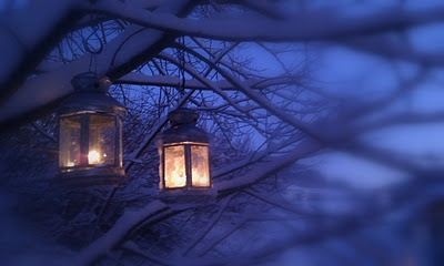 New year evening in my garden. :)