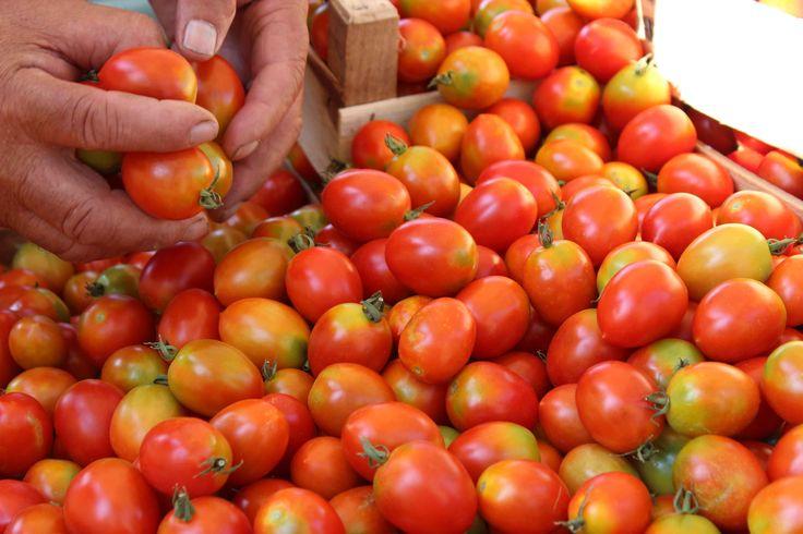 #Tomatoes of #Apulia.