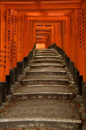 This is the Fushimi Inari Shrine complex found in Kyoto. Kyoto is the old capital of Japan and the residence for the Emperor from 794 until 1868. It is now the country's seventh largest city with a population of 1.4 million people. Over the years, Kyoto has been destroyed by many wars and fires, but escaped the air raids of World War II due to it's historic value. Countless beautiful temples, shrines and historic locations survive throughout the city today. The people here are more…