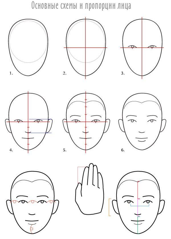 была картинки как нарисовать голову человека поэтапно средством средством накопления