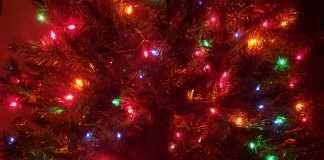 Aprende a colgar las luces del árbol de Navidad