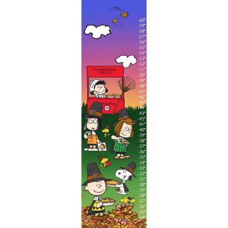 Peanuts Thanksgiving Canvas Growth Chart, Multicolor