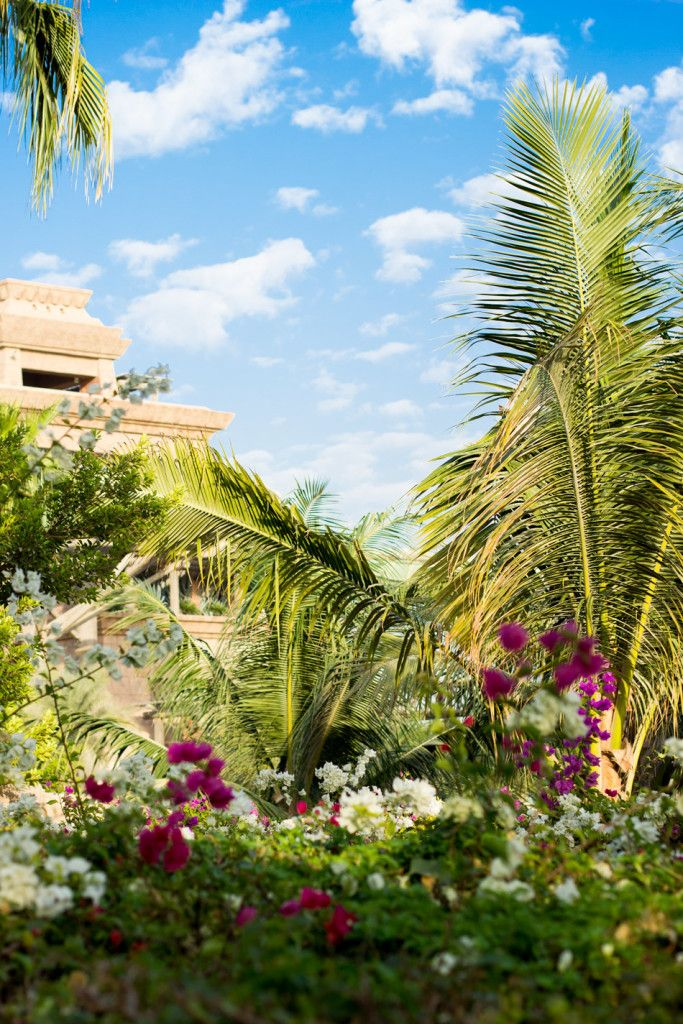 Aquaventure waterpark in Atlantis The Palm Dubai
