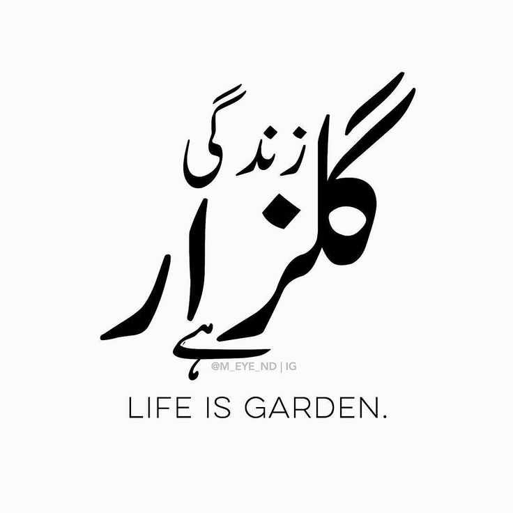 Gulzār is a urdu word which have Persian origin. Gulzār means a garden full of flowers.  .  In above pic I wrote زندگی گلزار ہے which means Life is a beautiful garden  .  This sentence can be little explained as:  Life is a beautiful garden in which flowers blooms. Each flower is a feeling and memory. Each memory have its meaning either a blessing or a lesson. There comes a time a dark time autumn when everything looks strange and tough and seems like nothing will be alright. But if you wait…