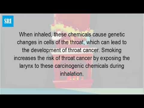 How Does Tobacco Cause Throat Cancer? - WATCH THE VIDEO   *** symptoms of throat cancer ***   Cancer of the mouth and throat causes, symptoms, treatment. What are the risk factors for laryngeal and hypopharyngeal health risks of smokeless tobacco american cancer society. Htm url? Q webcache. Tips throat cancer risk factors diet, tobacco, alcohol,...