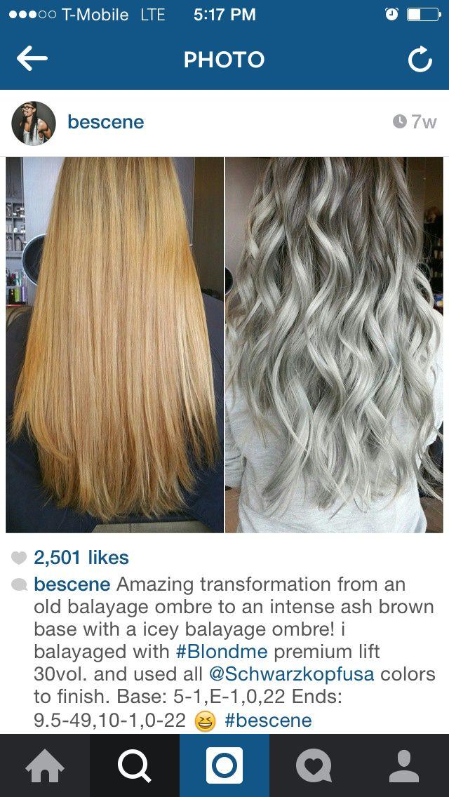 Silver Hair Color Formulas Matrix Dark Brown Hairs Of