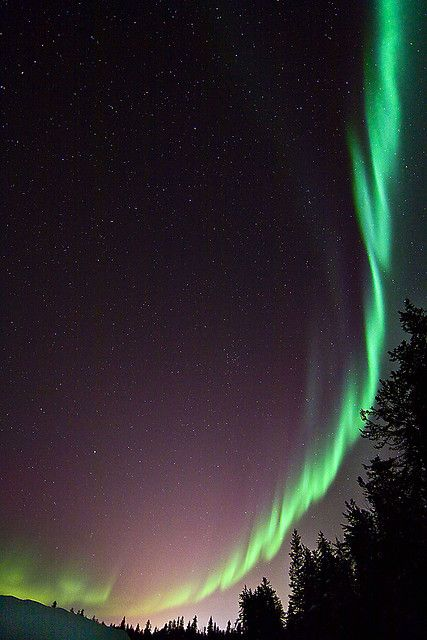 Bow of Orion, Northern Lights.