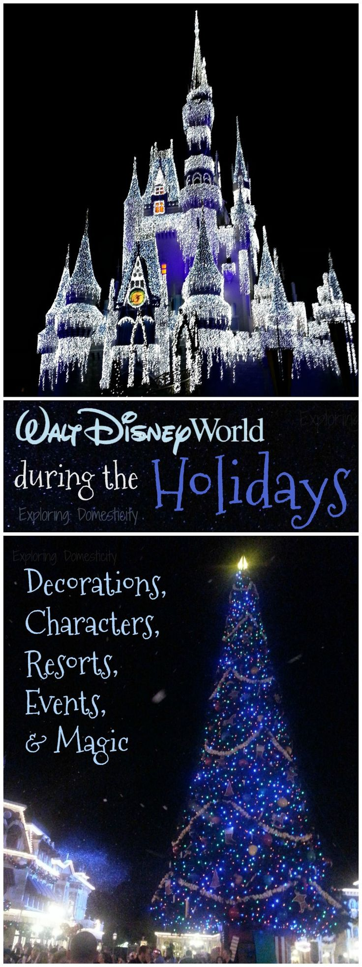 There are so many magical things to experience during a Walt Disney World Christmas! Decorations, special events and characters, etc. This is why your family should experience the magic of Walt Disney World during the holidays! (adsbygoogle = window.adsbygoogle || []).push({});  ...