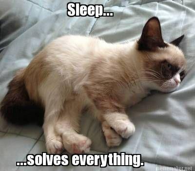 Grumpy Cat Sleep