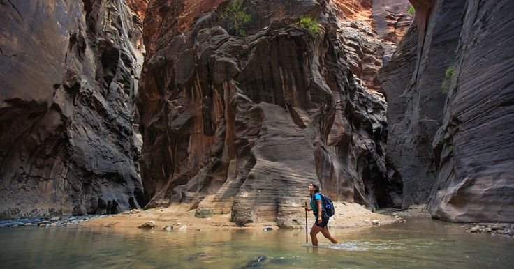 Ask anyone in the know and they'll probably tell you that during your visit to Zion National Park, the Narrows needs to be at the top of your must-do list.