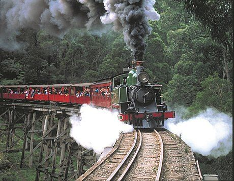 Puffing Billy coach tour