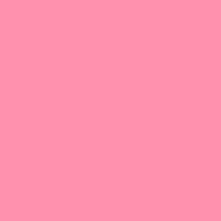 1024x1024 Baker-Miller Pink Solid Color Background