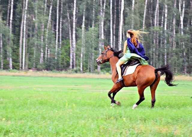 Instagram media by fordogs1313 - И только ветер догонит нас... #лошадь #галопп #поле #эльф #фильм #косплей