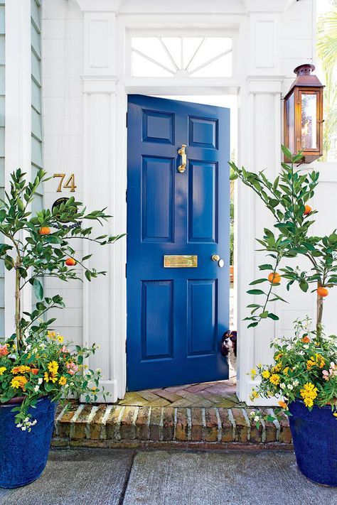 Strike a high note on an otherwise toned-down entry with a pop of color. This home has classic craftsmanship, such as fluted pilasters and a starburst transom, but what really shines—other than a cute pup—is the deep blue paneled door with shiny brass accessories.Paint Color: Gentleman's Gray (2062-20)