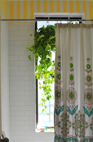 Great idea to add color and this ivy will love the moisture of a bathroom.