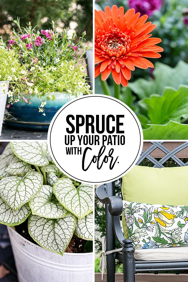 Simple Ways to Add Color to Your Back Porch