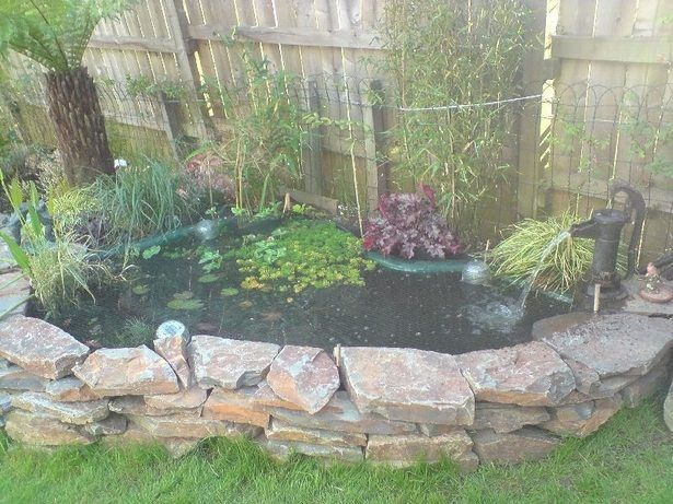 78 Best Images About Pond On Pinterest Gardens Small Yards And Waterfalls