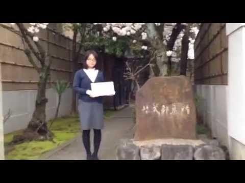 京の天気 2015年4月3日(金) 【京都はんなり天気】 紫式部墓所 [美人天気] - YouTube